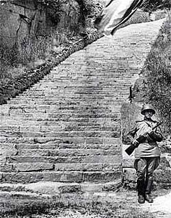 escaliers-Mauthausen.jpg